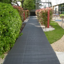 Heronrib Used as Path Matting