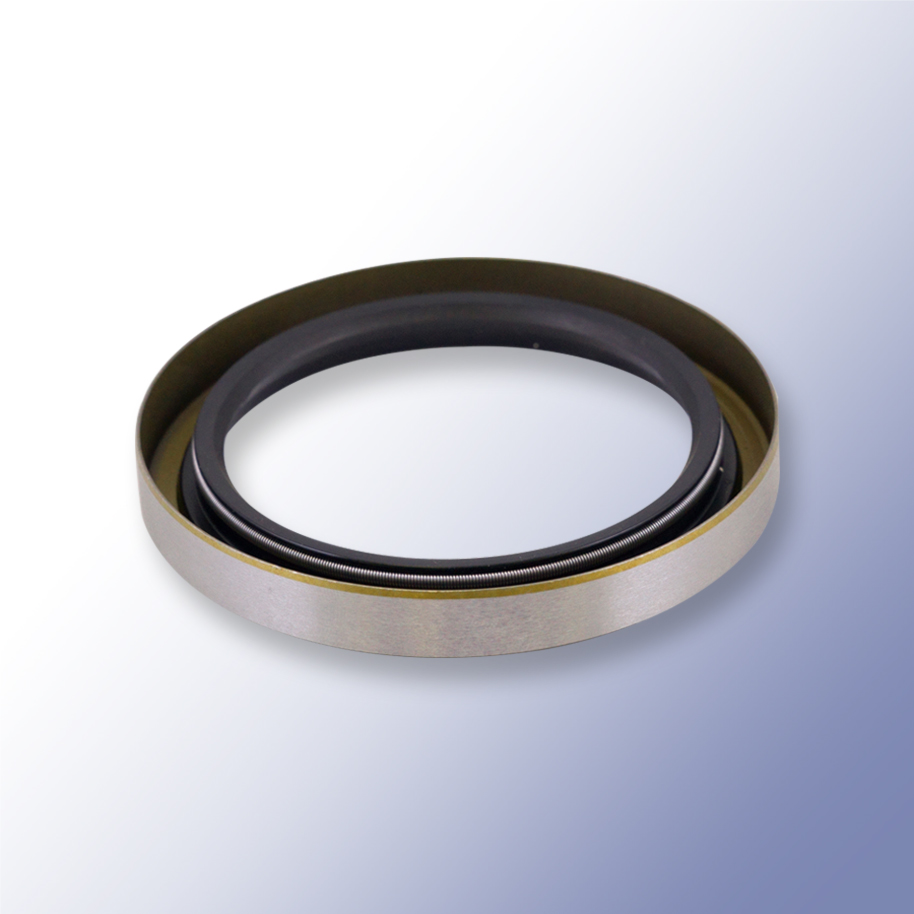 Oil Seal Type B Double Lipped